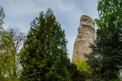 Burgruine Alte Burg