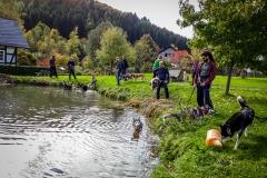 Husky Dorfweiher