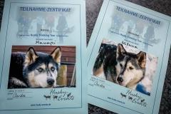 Husky Event Urkunde